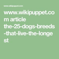www.wikipuppet.com article the-25-dogs-breeds-that-live-the-longest