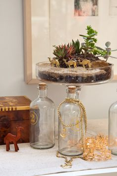 Twig Terrariums will be presenting at the 2015 Country Living Fair in Rhinebeck, NY!