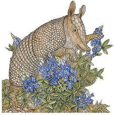Bo the Armadillo free cross stitch pattern by Jan Brett