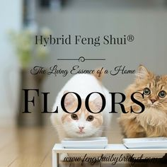 "The Feng Shui Living Essence of a Home ""Floors"" Offering  Bridget Saraka on Feng Shui and Lifestyle Muses - Feng Shui by Bridget"