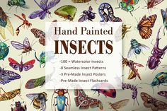 Hand Painted Insect Set by Bigredsharks Photoshop Actions, Natural History, Archaeology, Pattern Design, Insects, Hand Painted, Watercolor, Creative, Illustration