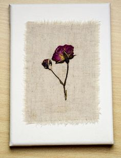 Pressed roses on linen and canvas