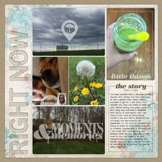 """I'm determined to get caught up on Project Life! somehow, someway...<br /> and I *will* finish 2015 too! <img src=""""http://www.designerdigitals.com/digital-scrapbooking/ideas/images/wink.gif"""" alt=""""Wink"""" /><br /><br /><br /><span style=""""font-weight:bold""""><span style=""""text-decoration:underline""""><a rel=""""nofollow"""" href=""""http://www.designerdigitals.com/digital-scrapbooking/supplies/product_info.php/products_id/21235"""" target=""""_blank"""" class=""""bb-url"""">Pocket Pages LTs No20</a></span></span> <br…"""