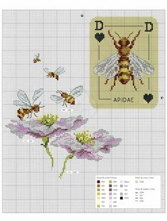 Gallery.ru / Фото #49 - Oiseauz, papillons et petites betes - Chispitas
