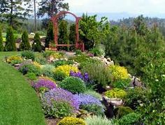 Image result for yellow and purple garden designs