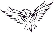 hawk tattoo - Google Search More