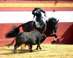 Gelán Noticias: TOROS.- El rejoneador Diego Ventura lo borda a pie y a caballo en el Festival de Paterna
