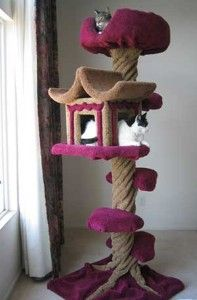 pagoda cat house... the only cat house i would think of having...cept not in pink...
