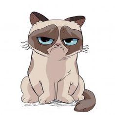 cartoon version of grumpy cat grumpy cat cartoon and cat rh pinterest com grumpy cartoon lady grumpy cartoon face