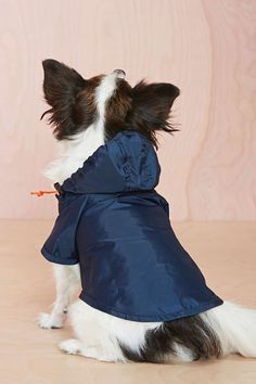 Top #Dog Raincoat