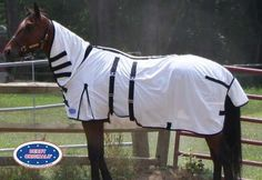 Derby Originals Ultimate Protection Combo Horse Fly Sheet by Derby Originals. $54.00. Elastic band on neck cover. Front closure buckles. Belly band with 2 adjustable surcingles. Gussets and tail cover. 100% nylon. Great sheet for horses that need additional layers of protection from flies and midges, such as those who suffer from sweet itch.