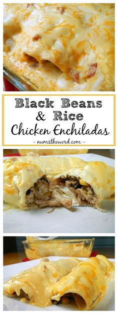 Black Bean & Rice Chicken Enchiladas are a simple, flavorful main dish that the entire family will love. Perfect for tonight or as a freezer meal next month! Substitute leftover Turkey!