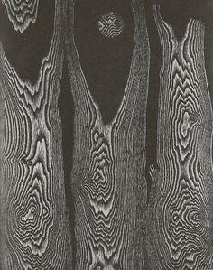 Forest, Sun, Snow (1956), Max Ernst