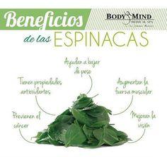Hoy te damos algunos motivos por los que debes incluir las #espinacas en tu #dieta 🌿  #BodyTips #Tip  #Salud  #Piel  #Skin  #Health  #Dieta  #Spinach  #Vitaminas  #Belleza  #Healthy  #SabiasQue  #Panama  #Like4like #InstaGood #BodyAndMind