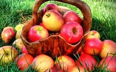 Apples for Beauty
