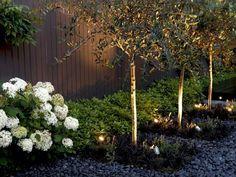plantes d'ombres hortensias-blanches-gravier-decoratif-eclairage-exterieur-deco-idees