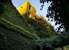 ~ photograph by Pancho Tolchinsky - compound known as Palo Alto in Barcelona, Spain - garden designer José Farriol