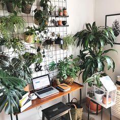 home office plants House Plants Decor, Plant Decor, Small Space Office, Small Spaces, Home Office Setup, Office Ideas, Office Plants, Home Decor, Office Environment