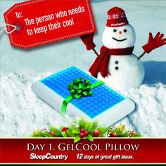 Day 1 - GelCool Pillow
