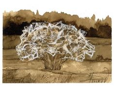"""The Outside Story: """"A Web of Mystery,"""" by Madeline Bodin. Illustration by Adelaide Tyrol. """"Janet Hayward Burnham, of Bethel, Vermont, was driving to the bank one day when she saw a tree on the side of the road that looked like it was covered in decorative webbing…"""""""