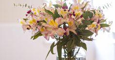 Como fazer um arranjo floral caseiro. Os arranjos florais não precisam ser caros e nem complicados. Até flores de supermercado se tornam algo especial quando você as arruma com capricho.