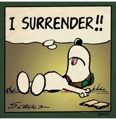 funny snoopy sayings Snoopy Images, Snoopy Pictures, Funny Pictures, Peanuts Cartoon, Peanuts Snoopy, Snoopy Cartoon, Snoopy Quotes, Peanuts Quotes, Joe Cool