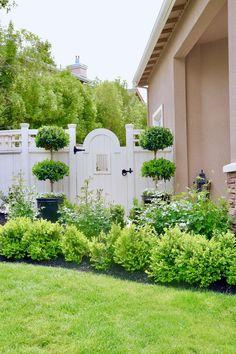 KRSTY WICKS--Garden