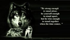 Wolf Gurus is the number 1 eCommerce site about wolf. until today we sell about Item About wolf, native america, viking, dream catcher. Wolf Pack Quotes, Wolf Qoutes, Lone Wolf Quotes, Great Quotes, Quotes To Live By, Me Quotes, Inspirational Quotes, Super Quotes, Silly Quotes