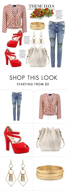 """""""The New Chic"""" by hastypudding ❤ liked on Polyvore featuring Frame, Sophie Hulme, Chico's, contest, polyvorecommunity, fashionset, namegame and AmiciMei"""