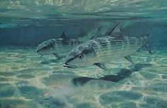 """Bonefish on the Flats"" by Mike Stidham"