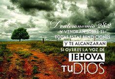 Y vendrán sobre tí todas estas bendiciones y te alcanzarán si oyeres la voz de Jehová tu Dios