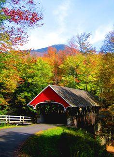 Covered bridge in New Hampshire