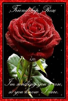 com occasion happy friendship day friendship rose img class alignnone Happy Friendship Day Picture, Friendship Day Pictures, Friends Image, All Friends, Special Friends, Online Friends, Friends Forever, Friendship Rose, Friendship Quotes
