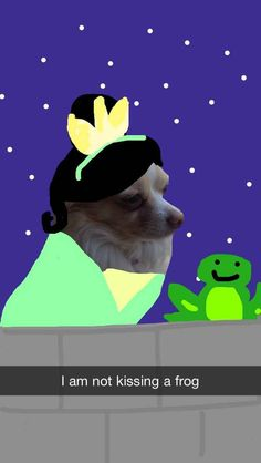 Tiana | These Snapchats Of A Dog Turned Into Disney Princesses Are Fantastic
