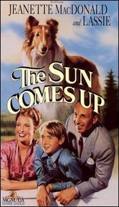 The Sun Comes Up is a 1949 Metro-Goldwyn-Mayer Technicolor picture with Lassie. Jeanette MacDonald had been off the screen for five years until her return in Three Daring Daughters (1948), but The Sun Comes Up was to be her last. In it, she had to share the screen not with an up-and-coming younger actress but with a very popular animal star.