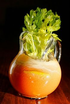 Another Bloody Mary Juicer Recipe