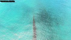 Weirdo ! :-O Pacific UFO - RODS capturado por Drone en video - La Serena - Chile, 01 de Enero 2016