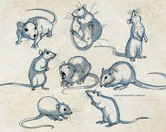 Lila's Art Blog: Rat Sketches