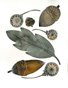 Watercolor Nature Art Painting - acorns, leaves, dandelions - Large Archival Print - 11x14 Gathering. $40.00, via Etsy.
