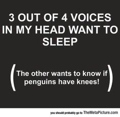 Insomnia Funny, Insomnia Quotes, Severe Insomnia, Funniest Quotes Ever, Funny Quotes, Funny Memes, Hilarious, Manado, Alone