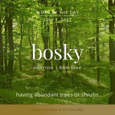 The #wordoftheday is bosky. #merriamwebster #dictionary #language