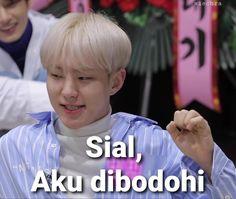 K Meme, Funny Kpop Memes, Stupid Memes, Meme Faces, Funny Faces, Seventeen Memes, Quality Memes, Good Jokes, Woozi