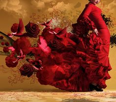 flamenco in my dreams