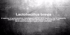 Lactobacillus Brevis is one of the most beneficial probiotics containing around…