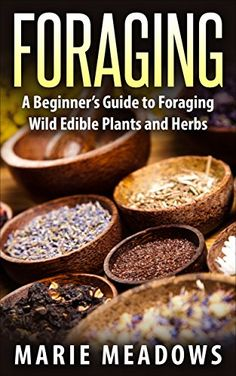 Foraging: A Beginner's Guide To Foraging Wild Edible Plants And Herbs by Marie Meadows http://www.amazon.com/dp/B016HHRY30/ref=cm_sw_r_pi_dp_s56mwb1K94DF3