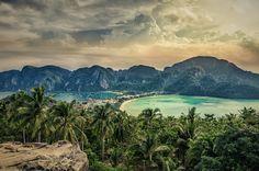 Affentanz zwischen Mangroven: Ein Reisebericht aus Thailand
