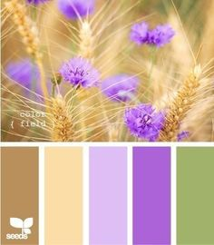 Color Field palette at Design Seeds. Maybe lavendar as an accent color? Design Seeds, Colour Pallette, Color Palate, Color Combos, Combination Colors, Brown Color Schemes, Kitchen Colour Schemes, Kitchen Colors, Purple Kitchen