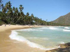 Playa Grande en Choroni