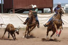 team roping | Bill Mars and Kevin England in the 60 roping Saturday.