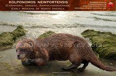 Kolponomos newportensis by RomanYevseyev on DeviantArt
